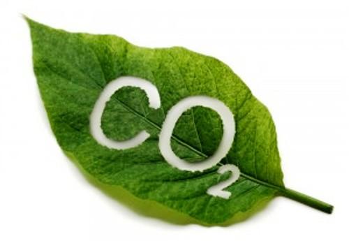 Clauger accompagne ses clients à réduire leur empreinte carbone