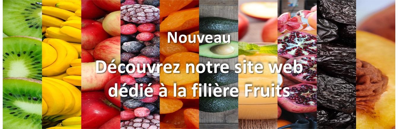 Découvrez notre site Clauger Fruits dédié à la filière Fruits