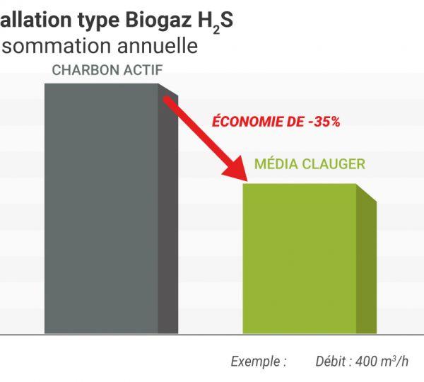 média filtrant : Installation type Biogaz H2S